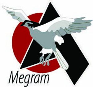Megram Consutling Services Ltd.
